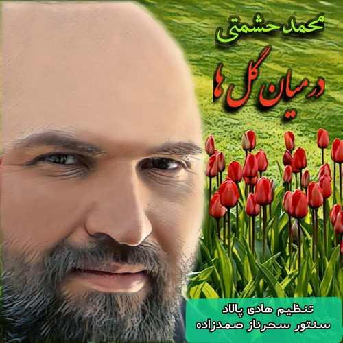 دانلود آهنگ جدید محمد حشمتی در میان گلها