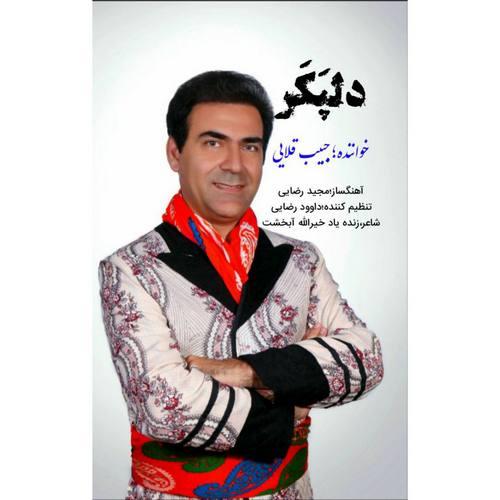 دانلود آهنگ جدید حبیب قلایی دلپکر